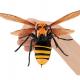 バンダイ、昆虫界最強の蜂をリアルな造形で再現したカプセル玩具『すずめばち』 を6月第3週より順次発売!