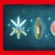 任天堂、『ファイアーエムブレム ヒーローズ』でスペシャルログインボーナスを実施…「Nintendo Switch」発売を記念して