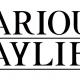スクエニ、Apple Arcade向けの新作RPG『バリアスデイライフ』を配信開始 開発チームは過去『オクトパストラベラー』を手掛ける