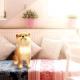 ネイロ、ペット育成シミュレーション『with My DOG - 犬とくらそう -』のiOS版を配信開始 190種類以上の子犬たちが登場
