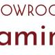 SHOWROOM、配信アプリ「SHOWROOM Gaming」をリリース ゲーム実況が誰でも簡単に