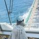 AMG GAMES、『猫侍』の公式アプリ『玉之丞のおでかけ』で期間限定の「カンパチ船長」専用コスチュームがガチャに登場