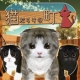litegame、体験型脱出ゲームが体験できる擬似VR脱出ゲーム『猫だらけの町』をリリース