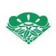 松竹、第2四半期の営業益予想を29.3億円→41.6億円に上方修正…「植物図鑑 運命の恋、ひろいました」や映画興行が想定上回る