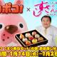 LINE、『LINE ポコポコ』×「すしざんまい」コラボ第2弾を実施! 限定メニュー「LINE ポコポコてまり寿司セット」を店頭にて販売