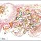 """カドカワ、「第1回 パズドラ塗り絵コンテスト」の結果を発表! ゲームに実装予定の""""ガンホー賞""""に選ばれた作品は!?"""