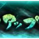 KLab、『幽☆遊☆白書 100%本気バトル』で「ピックアップガチャ」を開始! ★5「飛影」「雪菜」「美しい魔闘家鈴木」「鈴駒」の出現率がアップ