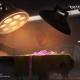 """NetEase Games、『IdentityⅤ 第五人格』×『ダンガンロンパ』コラボ第2弾の新たな情報を公開 """"手術室""""の画像から「罪木ちゃん」がトレンド入り"""