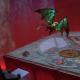 テンセント、『コード:ドラゴンブラッド』でランキンググループ機能&新ダンジョン「悪夢・青銅」正式解禁!トーナメント大会もまもなく開催
