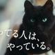 コロプラ、『クイズRPG 魔法使いと黒猫のウィズ』の新テレビCM「魚屋編」を3月22日から放映開始