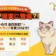 ネットマーブル、『二ノ国:Cross Worlds』のアドトラックを運行 東京都内主要スポットに超大型猫「ウダダ」が出現