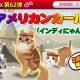ESTgames、『マイにゃんカフェ』で「猫 BOX 第62弾」やイベント「イタズラな季節」を実施 「アメリカンカール(インディにゃん)」が新登場
