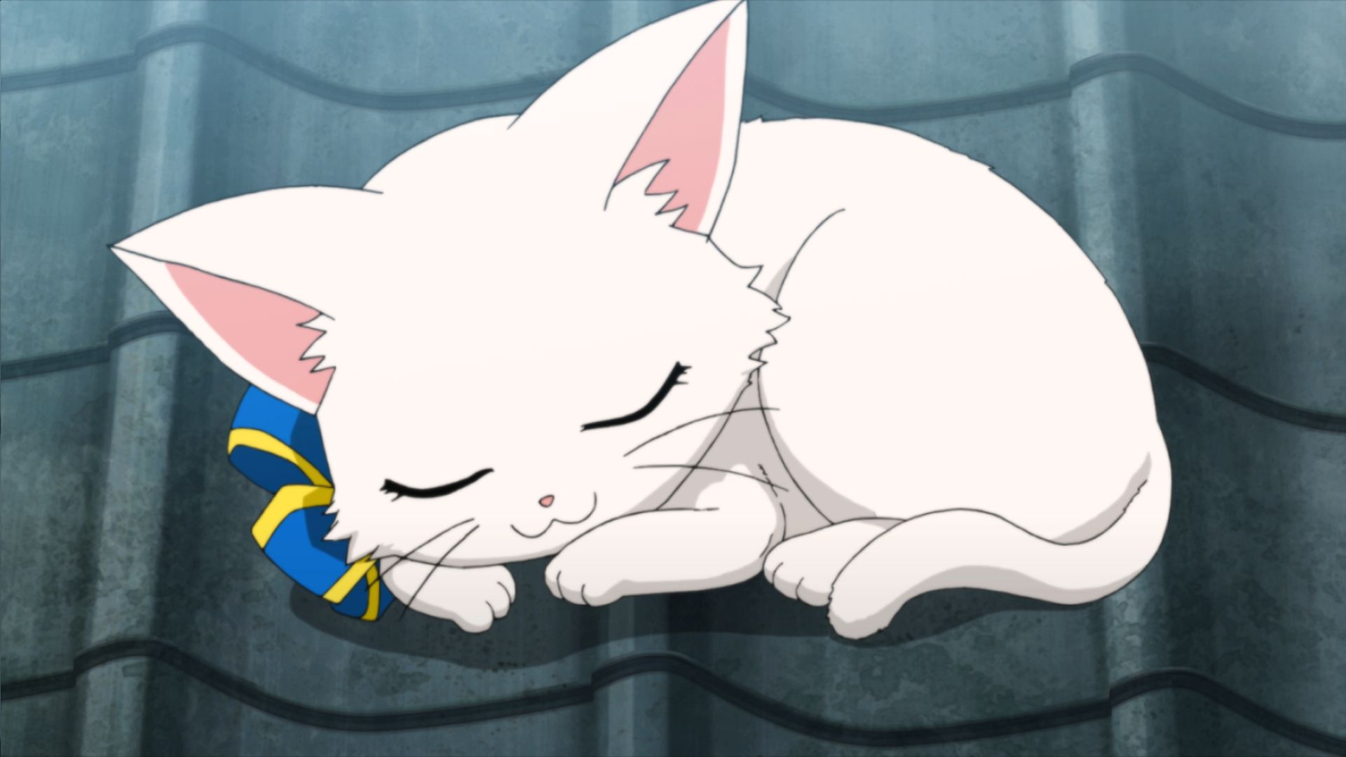 コロプラ白猫プロジェクトキャラクターキャトラがtv